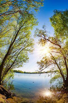 Een zomerse dag aan het meer van Günter Albers