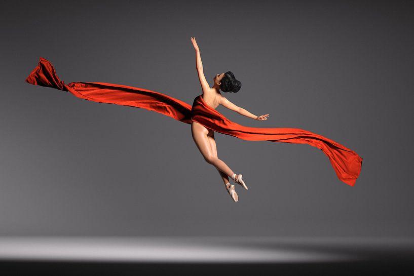 Sprong in rood van Arjen Roos