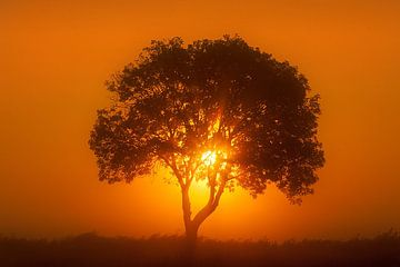 Sunrise (landscape) sur Peter Halma