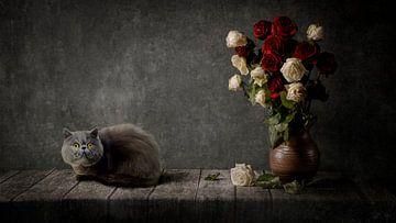 Stillleben eines persischen langhaarigen schwarzen Kruges mit verwelkten Rosen. von Cindy Dominika