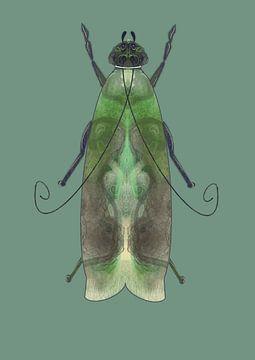 Grüne Motte auf grünem Hintergrund von Angela Peters