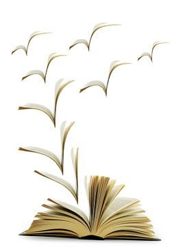 Een open boek van Lucie Bos