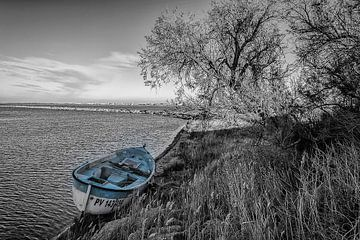 Barque bleue van Catherine Fortin