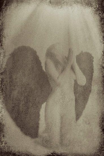 Engel 7 von Jeroen Schipper