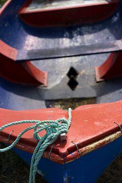 Kleurige roeiboot van Marloes van Pareren