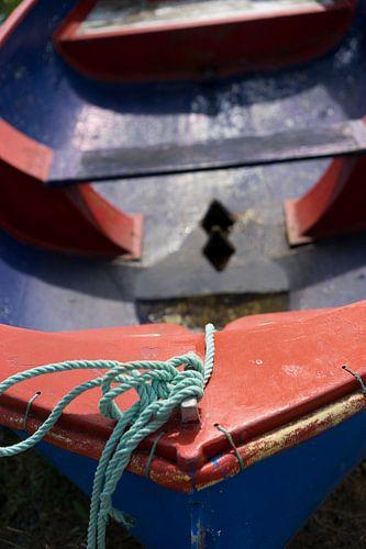 Kleurige roeiboot van