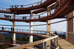 Aussichtsturm Bad Wildbad
