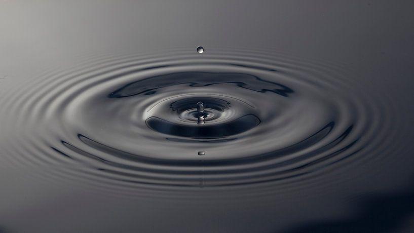 Grijze Waterdruppel / Gray Water Drop van Wilma Wijnen