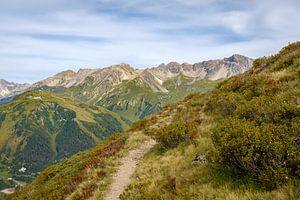 Alpenrosenweg, St. Anton am Arlberg