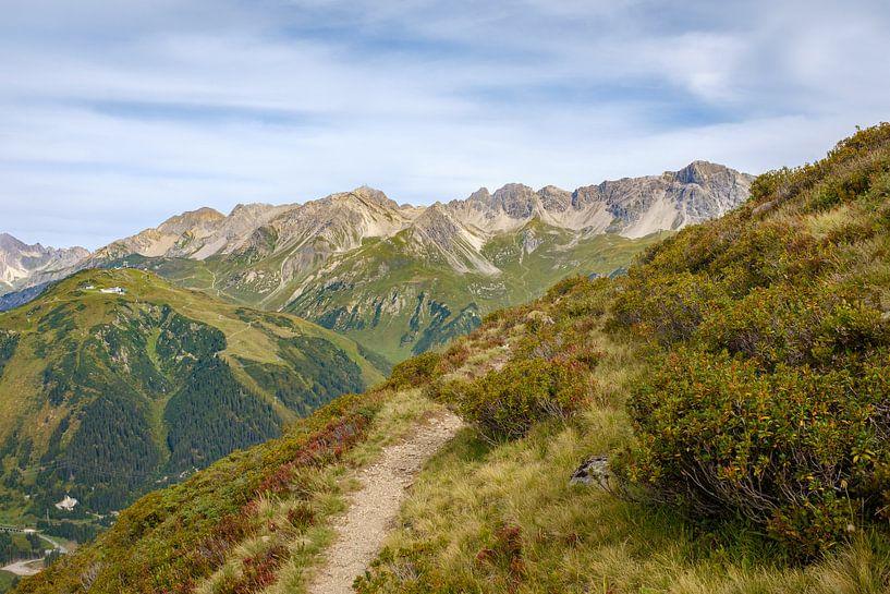 Alpenrosenweg, St. Anton am Arlberg van Johan Vanbockryck