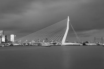 Die Skyline von Rotterdam in Schwarz-Weiß von Miranda van Hulst