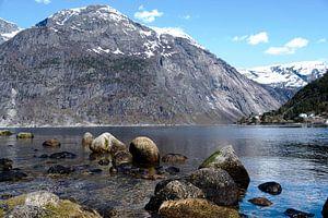 fjorden noorwegen van Nienke Stegeman