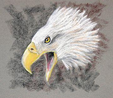 Screaming eagle von Ton van Buuren