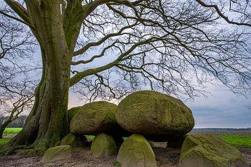 Hunebed D21 een monument in het landschap