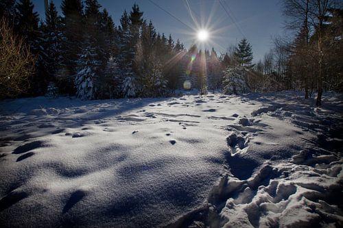 Winterse zonsondergang in Duitsland