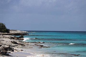 Meeresblick auf Klein Bonaire. von Silvia Weenink