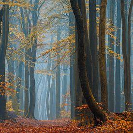 Blauer Nebel von Lars van de Goor