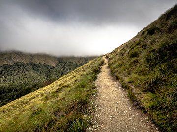 Het Pad naar de Wolken boven Queenstown in Nieuw-Zeeland van Rik Pijnenburg