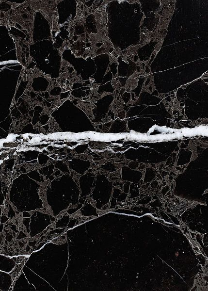 NETWORKED BLACK & WHITE v2 van Pia Schneider