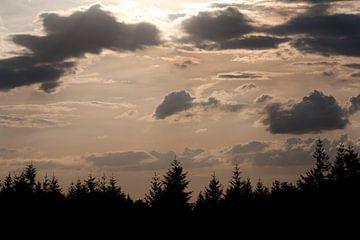 Zonsondergang von Evelyne Renske