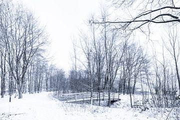 Winters sfeerbeeld van landgoed Everland (tussen Roosendaal en Nispen) van Fotografie Jeronimo