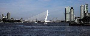 Erasmusbrug  (panorama) van