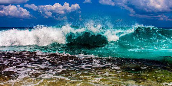 The Wave van Alex Hiemstra