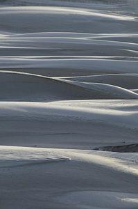 Zandduinen van