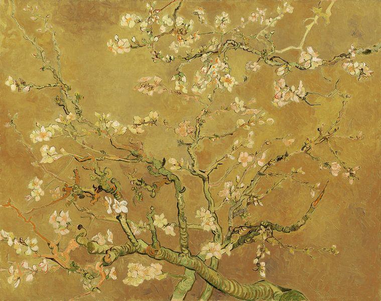 Amandelbloesem van Vincent van Gogh (Oker)  van Meesterlijcke Meesters