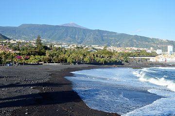 Playa Jardín - waarschijnlijk het beroemdste strand van Puerto de la Cruz van kanarischer Inselkrebs Heinz Steiner
