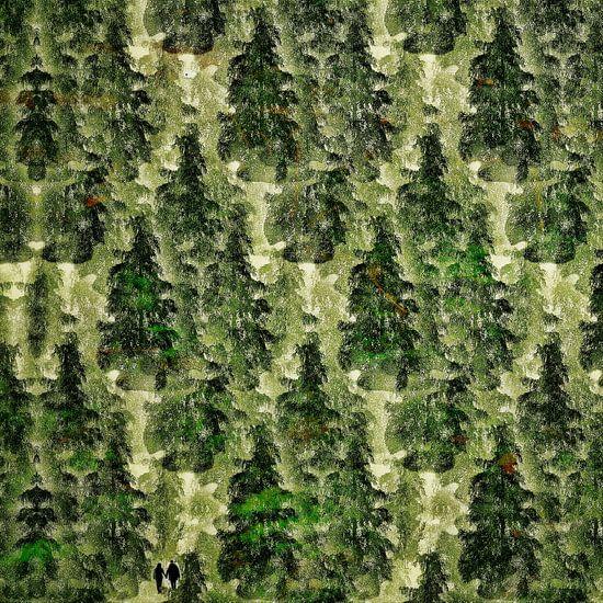 Bos uit één boom (woud met twee wandelaars)
