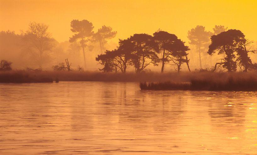 Strabrechtse Heide 178 van Deshamer