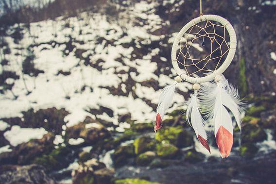 Dromenvanger in een winters landschap van Marjolijn Barten