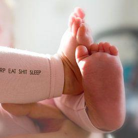 BURP EAT SHIT SLEEP van Marije Zuidweg