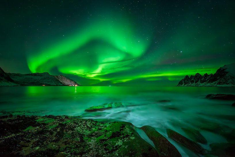 Aurora over Ersfjord and Tugeneset rocky coast with mountains in background, Norway von Wojciech Kruczynski