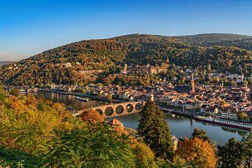 Heidelberg am Neckar von Uwe Ulrich Grün