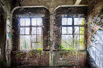 Verwilderde ramen sur Rens Bok