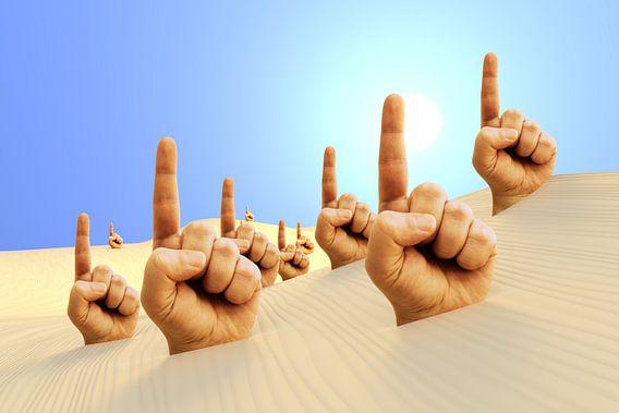 Rufer in der Wüste