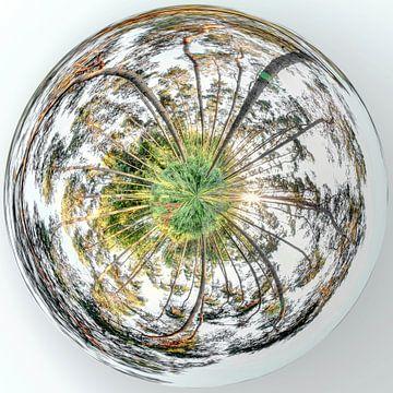 Mini-Planet 360 in Wallonisch-Brabant von Paul Marnef