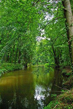 Flusslandschaft an der Hase von Norbert Sülzner
