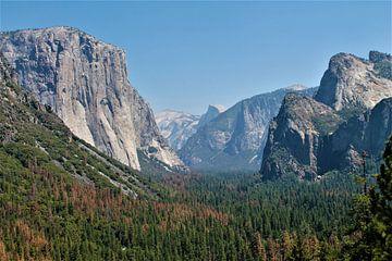 Yosemite National Park van Christiaan Van Den Berg