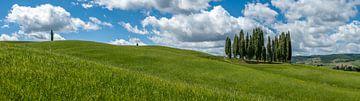 Ein toskanisches Panorama
