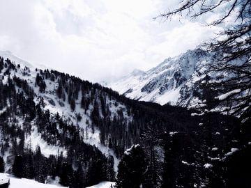The magic of snow...(8) van Christoph Van Daele