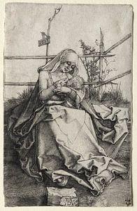 Die Jungfrau Maria mit Kind auf einer Grasbank, Albrecht Dürer