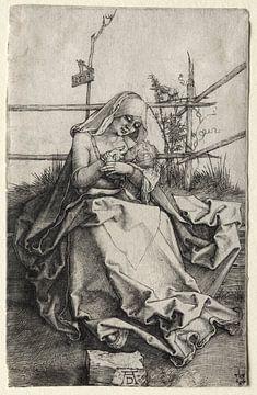 Die Jungfrau Maria mit Kind auf einer Grasbank, Albrecht Dürer von De Canon