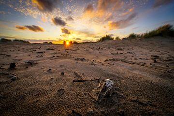 Dünengebiet von Dirk van Egmond
