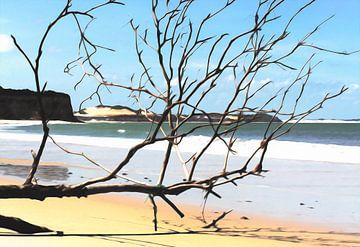 Het strand van Pipa Brazilië van Nannie van der Wal