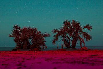 Paradijs onder de sterrenhemel