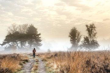 Nebel auf der Leusderhei von Dick Jeukens