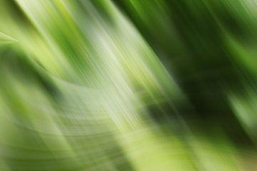 gruen van